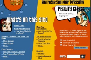 image of website 'The Cool Spot'