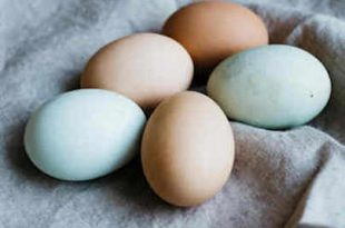 Helpful Easter Checklist to Make Your Holiday Easier....dobibe.com