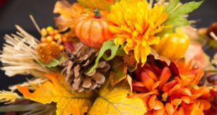 Easy Thanksgiving DIY Decorations: Budget Friendly