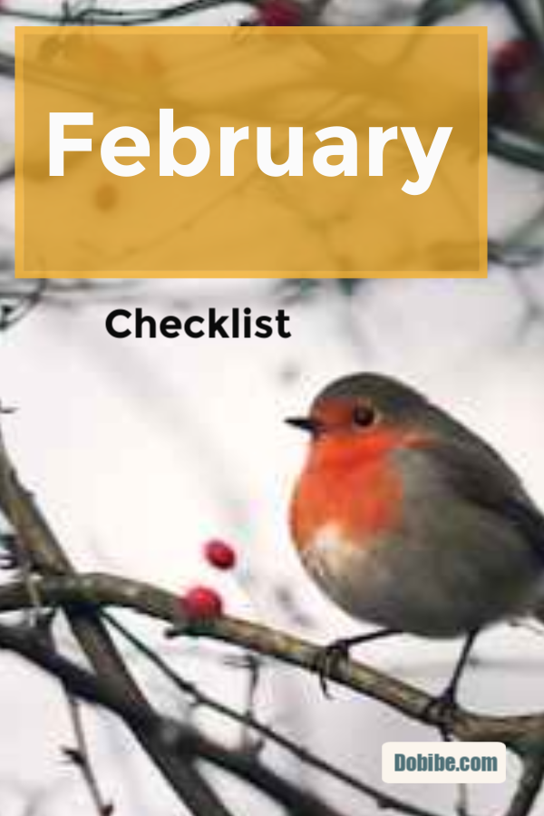 February Checklist begins spring cleaning and maintenance. Follow the February checklist for a complete list that will get your home in top shape.