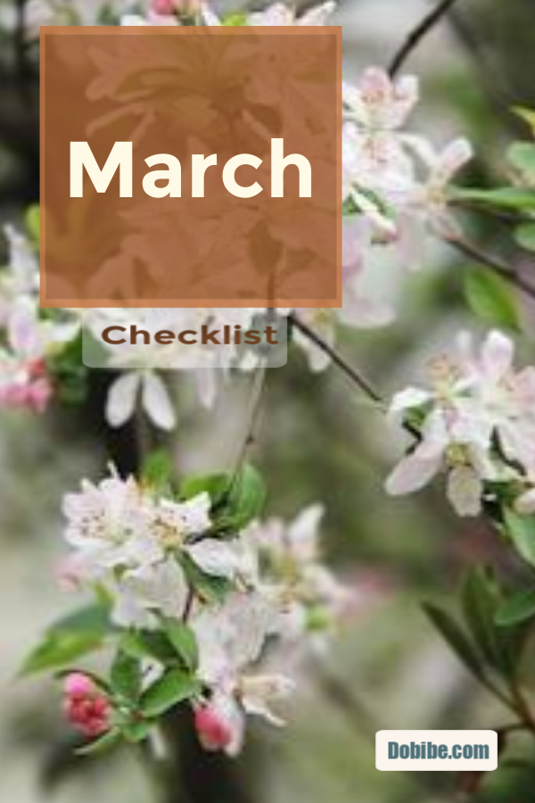 Continue spring cleaning during March--basement and bedrooms.
