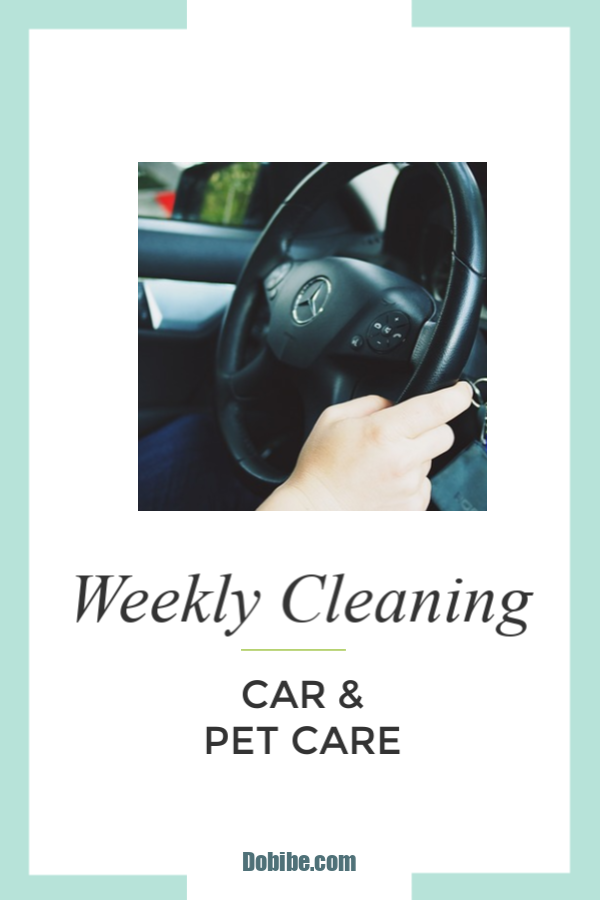 Keep your car clean and maintained with this weekly checklist. Pet chores include furry, feathered and those with fins.